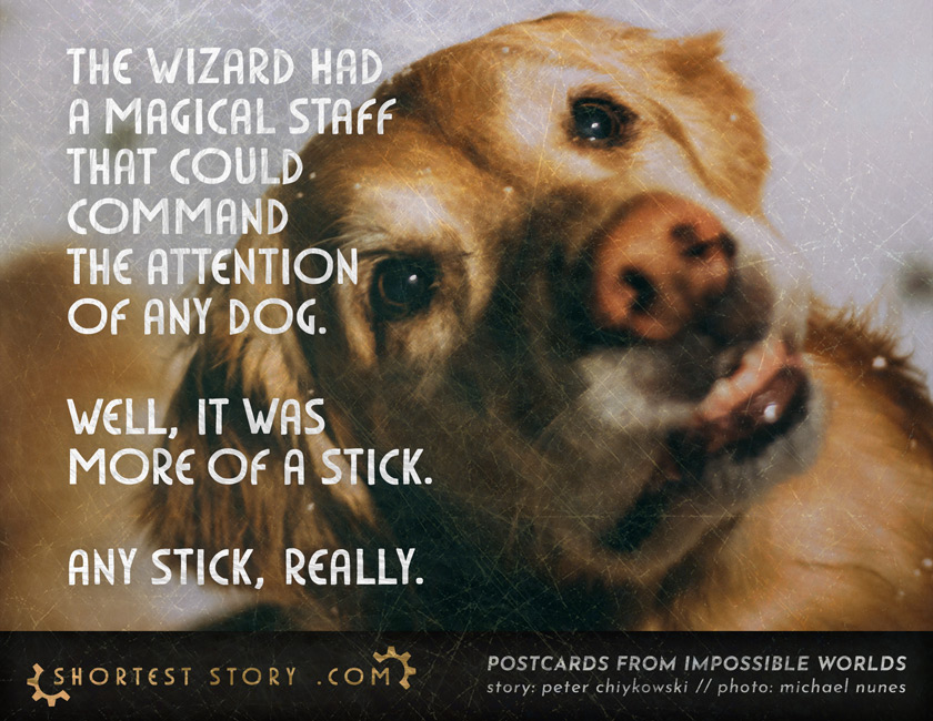 a short story about a magical staff with the power to command dogs